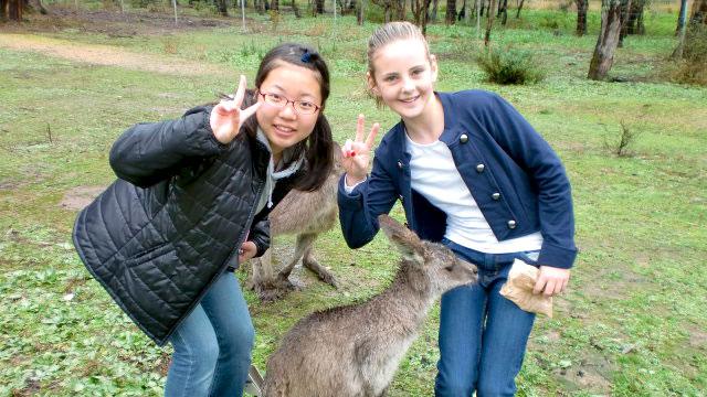 オーストラリア語学研修